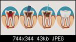 Нажмите на изображение для увеличения Название: 544e671f6f2411f8598d88fc5204592e.jpg Просмотров: 8 Размер: 43.3 Кб ID: 17397