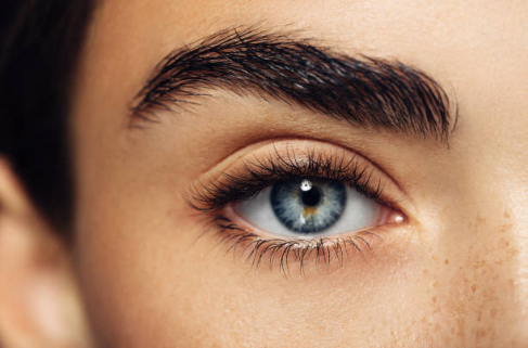 Название: Screenshot_2018-07-06 Eyebrow Model Stock Photos and Pictures Getty Images.png